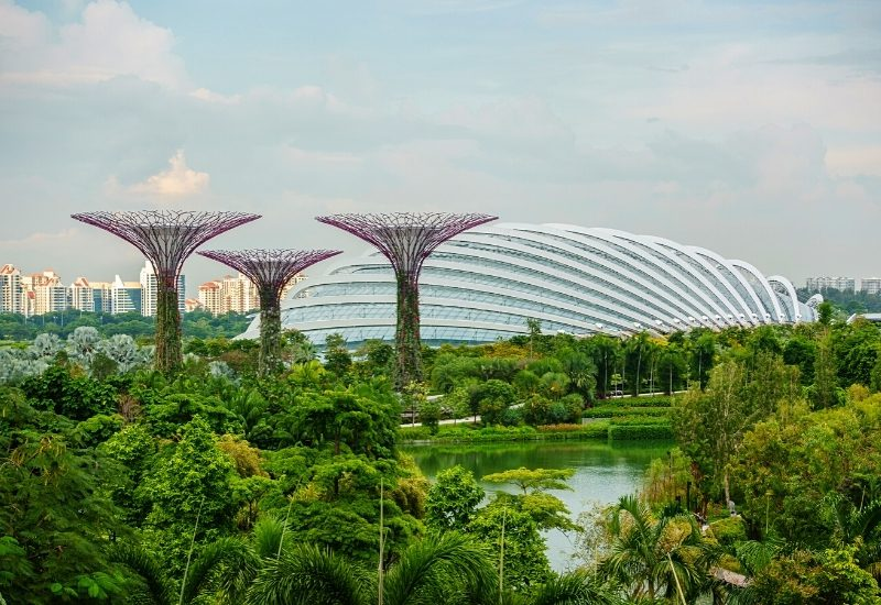 Singapore Gardens by the Bay, three Supertrees and the flower dome